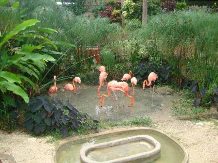 emperor-valley-zoo