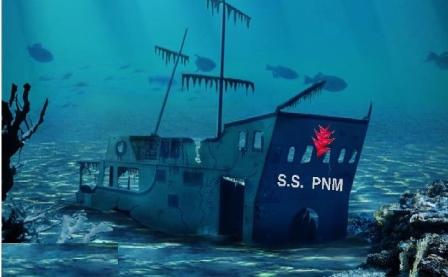 SS PNM 2