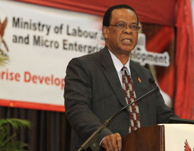 Minister of Labour and Small and Micro Enterprise Errol McLeod